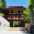 室生寺の写真_330795
