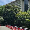 富士屋ホテルの写真_330924