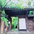 蓮華寺の写真_331458