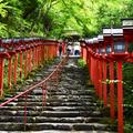 貴船神社の写真_339697