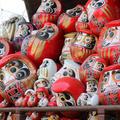 少林山達磨寺の写真_408231