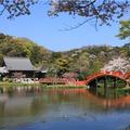 神奈川県立金沢文庫の写真_419701
