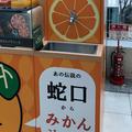 松山空港の写真_434046