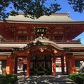 千葉神社の写真_438084