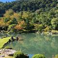 天龍寺の写真_449476