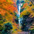 神庭の滝の写真_460484