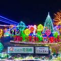 鳥取県立フラワーパークとっとり花回廊の写真_464061