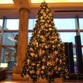 横浜ロイヤルパークホテルの写真_476035