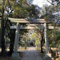 赤坂氷川神社の写真_486224