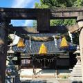 安江八幡宮の写真_489940