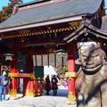 塩竈神社の写真_490795
