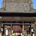 興正寺公園の写真_493287