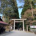 天岩戸神社の写真_507267