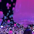 デジタルアート ミュージアム(MORI Building Digital Art Museum: EPSON teamLab Borderless)の写真_532745
