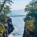 城ヶ崎海岸の写真_534241
