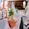 こんぴらしょうゆ豆本舗参道店の写真_555852