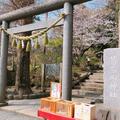 葛原岡神社の写真_562757