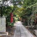 京都御苑の写真_563740