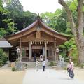 竈門神社の写真_568153