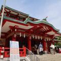 富岡八幡宮の写真_569574