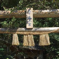 荒立神社の写真_570670