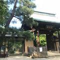 豪徳寺の写真_573414