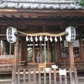 川越熊野神社の写真_579095