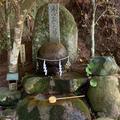 玉作湯神社の写真_584411