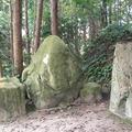 黄泉比良坂の写真_586523