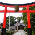姫嶋神社の写真_609962