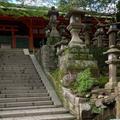 榎本神社の写真_639490