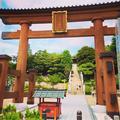 宇都宮二荒山神社の写真_645252