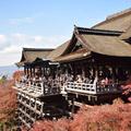 清水寺の写真_665690