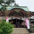 今戸神社の写真_666327