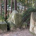 黄泉比良坂の写真_680838
