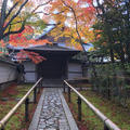 高桐院の写真_697807