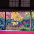 圓光寺の写真_697816