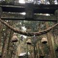 上色見熊野座神社の写真_715868