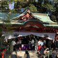 來宮神社の写真_727304