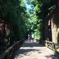 猿島の写真_751543