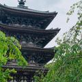 醍醐寺の写真_764834