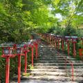 貴船神社の写真_785312