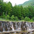 水分れ公園の写真_81096
