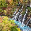 白ひげの滝の写真_815563