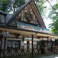 高尾山さる園・野草園の写真_82236