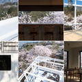 ASUWAYAMA DECKの写真_85019