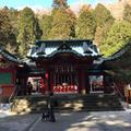 箱根神社の写真_879894