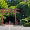香取神宮の写真_917437