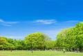 代々木公園の写真_759284