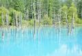青い池の写真_924523